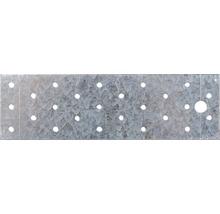 Lochplatte 200 x 60 mm, sendzimirverzinkt, 1 Stück