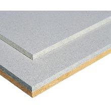 Estrichelement fermacell 2 E 31 mit 10 mm Holzfaser 1500 x 500 x 30 mm