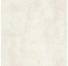 Feinsteinzeug Wand- und Bodenfliese Hometec Ivory matt 60 x 60 cm