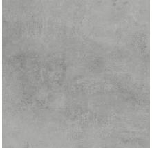 Feinsteinzeug Wand- und Bodenfliese HOMEtek Grey matt 60 x 60 cm