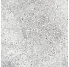 Steinzeug Wand- und Bodenfliese Capra hellgrau 24,5 x 24,5 cm