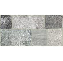 Feinsteinzeug Wand- und Bodenfliese Leo Grigio 30,2 x 60,4 cm