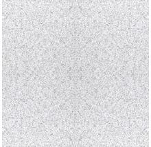 Granit Wand- und Bodenfliese 303 grau 30,5 x 30,5 cm