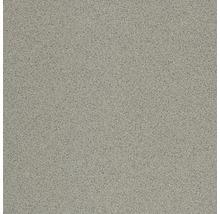 Bodenfliese Nevada grau ungl. 20 x 20 cm R10A 9 mm Stark