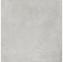 Feinsteinzeug Wand- und Bodenfliese Gare du Nord light grey 60x60 cm