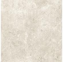Feinsteinzeug Wand- und Bodenfliese Baltimore beige 60 x 60 cm