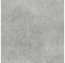 Feinsteinzeug Wand- und Bodenfliese Baltimore grau 60 x 60 cm