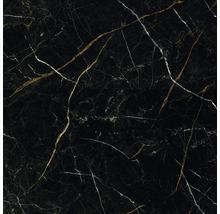 Wand- und Bodenfliese Royal Black 60x60cm, rektifiziert