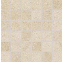 Feinsteinzeugmosaik Udine beige unglasiert 30x30 cm