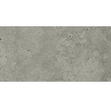 Feinsteinzeug Wand- und Bodenfliese Candy light grey 30 x 60 cm rektifiziert