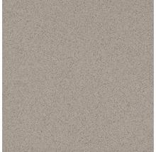 Bodenfliese Feinkorn Triton grau 200, 30x30 cm, R10