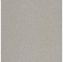 Bodenfliese Rako Taurus Granit Nordic 29,8x29,8x0,9cm, R9A