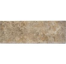 Flairstone Poolumrandung Beckenrandstein Livorno Element gerade braun 1 Längsseite gerundet 115 x 37 x 3 cm