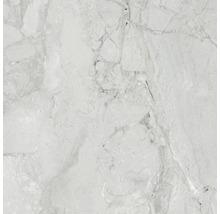 Wand- und Bodenfliese Sicilia Cenere poliert grau 60 x 60 cm