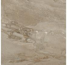Wand- und Bodenfliese Sicilia Miele poliert braun 80 x 80 cm