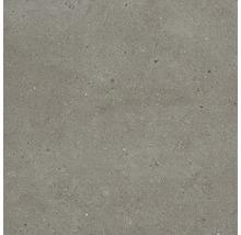 Feinsteinzeug Wand- und Bodenfliese Tessin grau 60 x 60 cm
