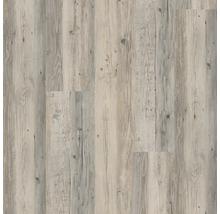 Vinylboden 8.0 Kiefer modern