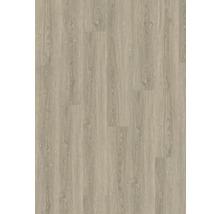 Vinylboden 2.5 EICHE VILNIUS GRAU,22,86x151,69cm