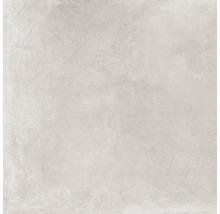 Wand- und Bodenfliese Grennwich greige 120 x 120 cm matt