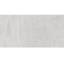 Feinsteinzeug Wand- und Bodenfliese Lavik Pearl 32X62,5cm