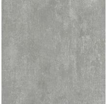 Wand- und Bodenfliese Industrial Steel anpoliert 60 x 60 cm