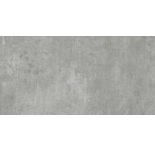 Wand- und Bodenfliese Industrial Steel anpoliert 60 x 120 cm