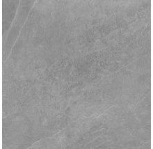 Feinsteinzeug Wand- und Bodenfliese Lavik Grey 60X60 cm