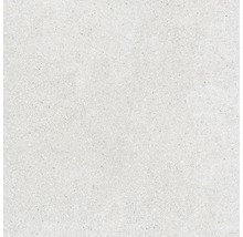 Feinsteinzeug Wand- und Bodenfliese Sassi Blanco 60X60 cm