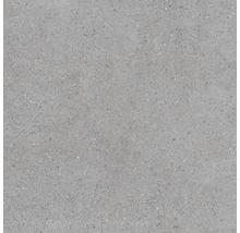Feinsteinzeug Wand- und Bodenfliese Sassi Gris 60X60 cm
