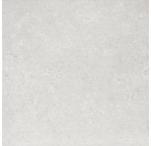 Bodenfliese Rako Basel hellgrau 60x60cm