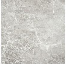 Feinsteinzeug Wand- und Bodenfliese Dalven grey 60 cm x 60 cm