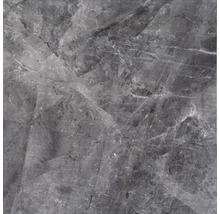 Feinsteinzeug Wand- und Bodenfliese Dalven Nero 60 cm x 60 cm