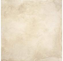 Feinsteinzeug Wand- und Bodenfliese Jasper beige 60x60cm rektifiziert