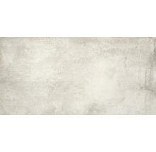 Feinsteinzeug Wand- und Bodenfliese Jasper Silver 60x120cm rektifiziert