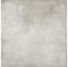 Feinsteinzeug Wand- und Bodenfliese Jasper Silver 100x100cm rektifiziert