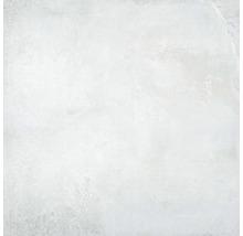 Feinsteinzeug Wand- und Bodenfliese Jasper white 100x100cm rektifiziert