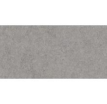 Wandfliese Rako Block dunkelgrau 30x60cm matt
