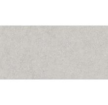 Wandfliese Rako Block grau 30x60cm matt