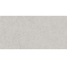 Wandfliese Rako Block grau 30x60cm glänzend