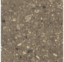 Bodenfliese Marazzi Ceppo di Gre beige 60x60cm