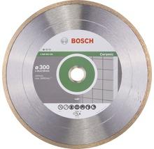 Diamanttrennscheibe Standard for Ceramic 300 x 30+25,40 x 2 x 7 mm