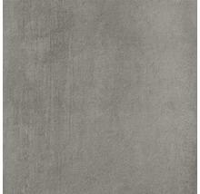 Terrasssenplatte Meissen Grava grau 59,3x59,3x2cm