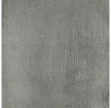 Bodenfliese Meissen Grava grau 59,8x59,8x0,8cm
