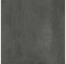 Bodenfliese Meissen Grava grafit 79,8x79,8x0,8cm