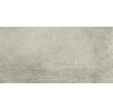 Feinsteinzeug Wand- und Bodenfliese Grava hellgrau 29,8x59,8x0,8cm rektifiziert