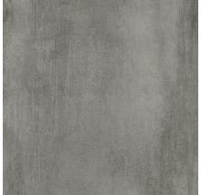 Bodenfliese Meissen Grava grau 79,8x79,8x0,8cm