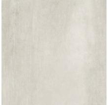 Bodenfliese Meissen Grava weiß 79,8x79,8x0,8cm