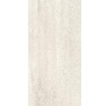 Feinsteinzeug Wand- und Bodenfliese Cemlam 30x60 cm perla