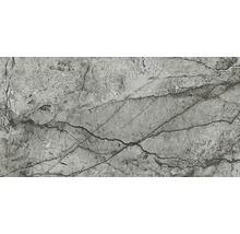 Bodenfliese Meissen Essential grau poliert 59,8x119,8x0,8cm