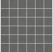 Feinsteinzeugmosaik Optimum grafit 30 x 30 cm